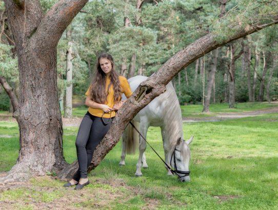 Paarden shoot